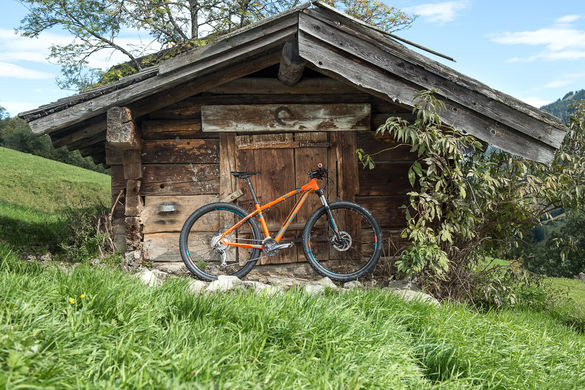 Mountain bicikl
