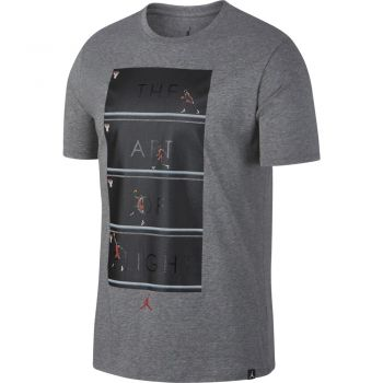 Nike Art Of Flight Tee, majica, siva