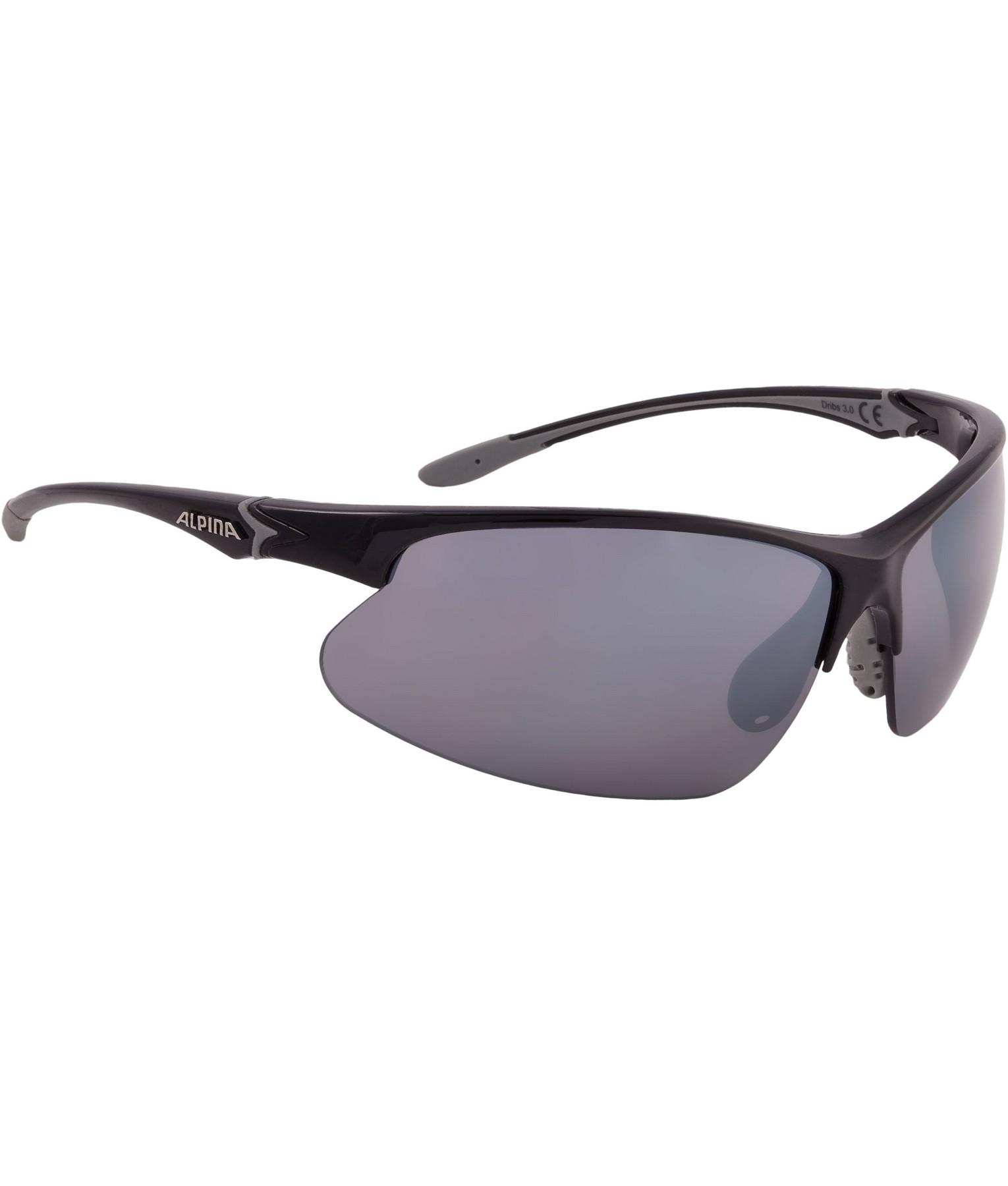 Alpina DRIBS 3.0, naočale, siva
